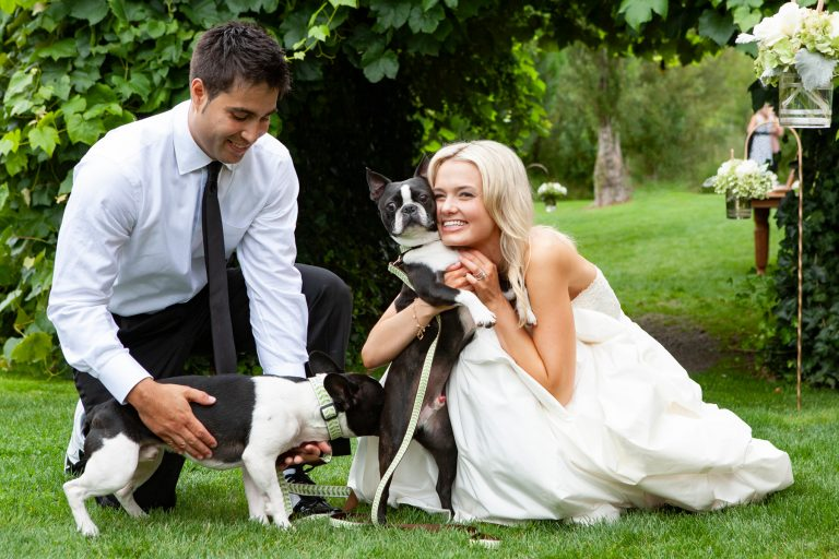 dogs-at-weddings-boxer-funny-moments-jamie1381.jpg