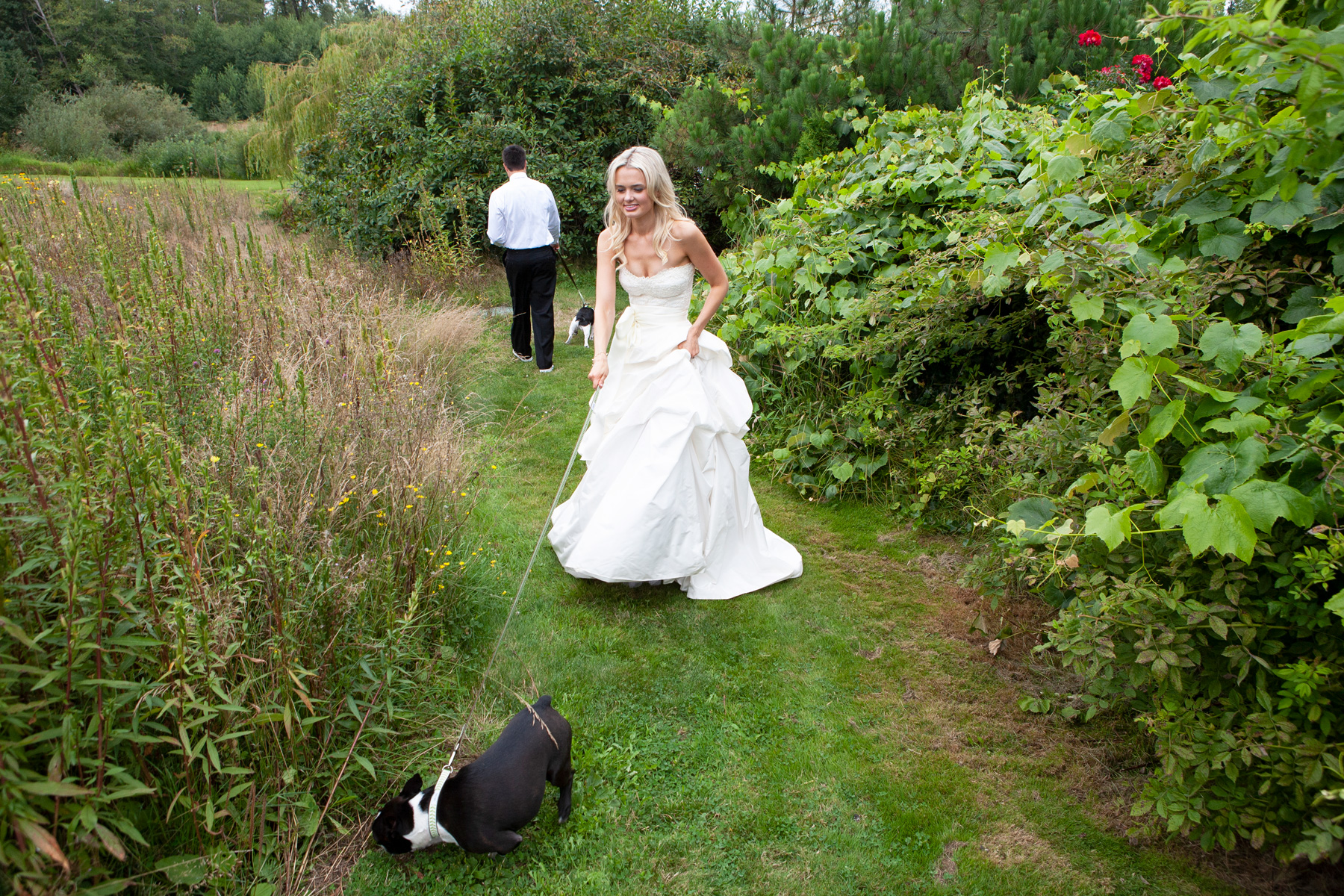 dogs-at-weddings-boxer-funny-moments-jamie1387.jpg