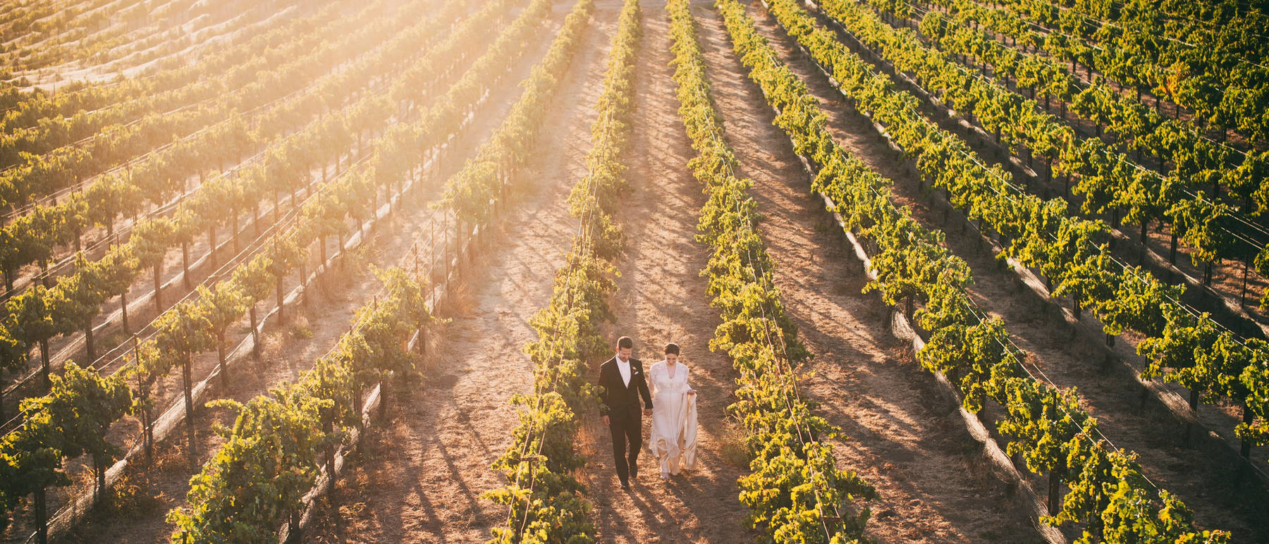 johnandjoseph-wedding-photographer-hz-slider-181