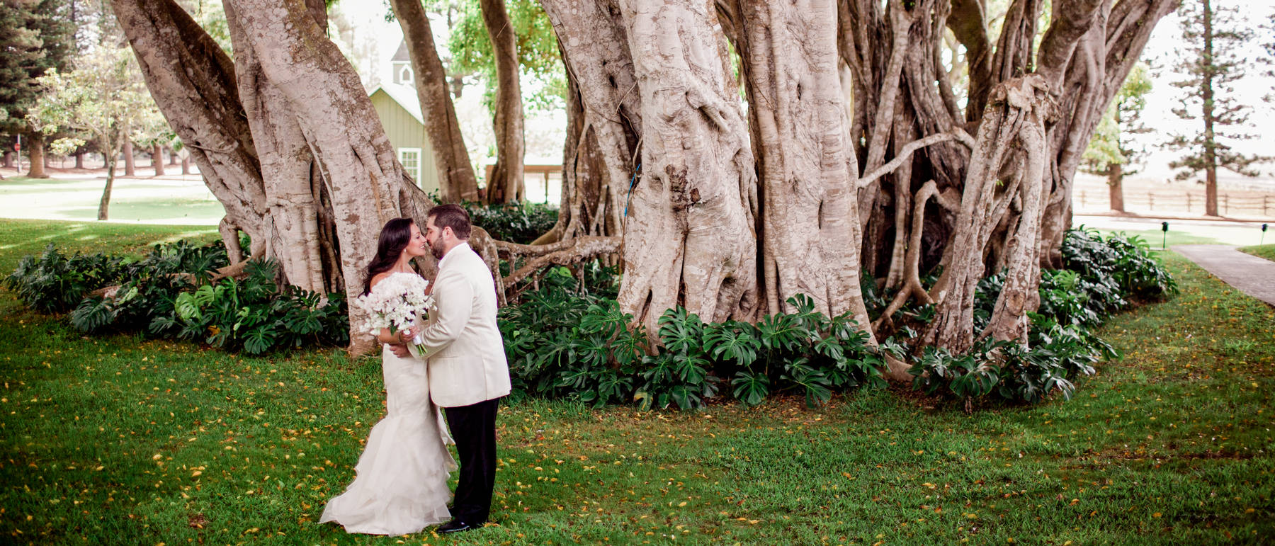 johnandjoseph-wedding-photographer-hz-slider-352